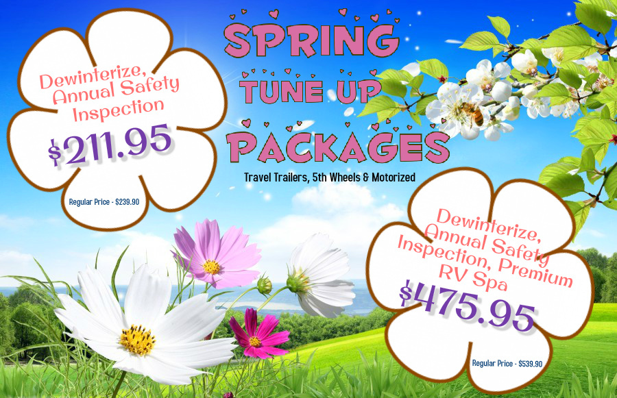 spring tune up package